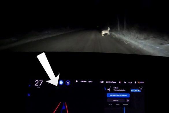 A Tesla önvezető rendszere felismert és kikerült egy szarvast